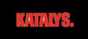 katalys-stor